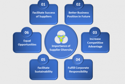 What is Supplier Diversity and Why it is Important?